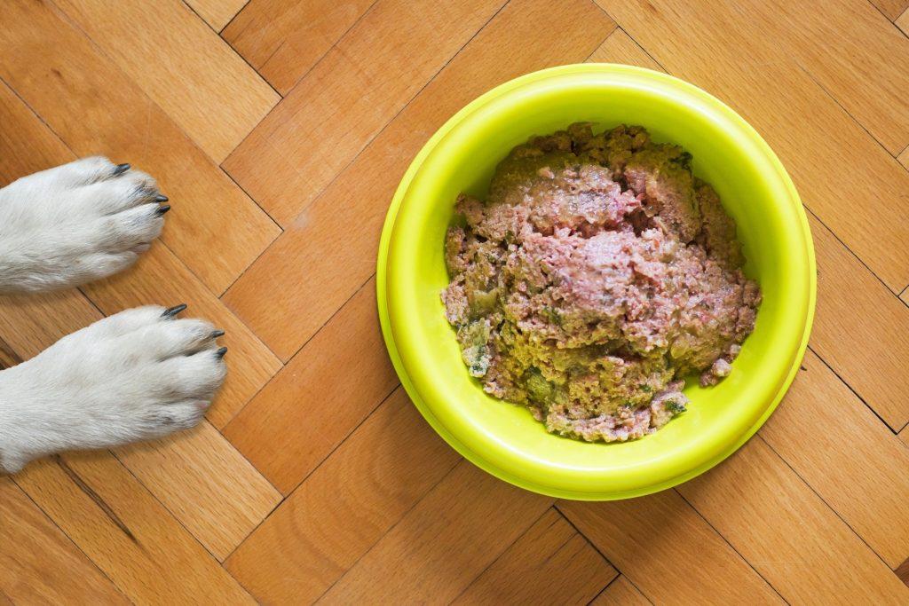 Hypoallergenes Hundefutter